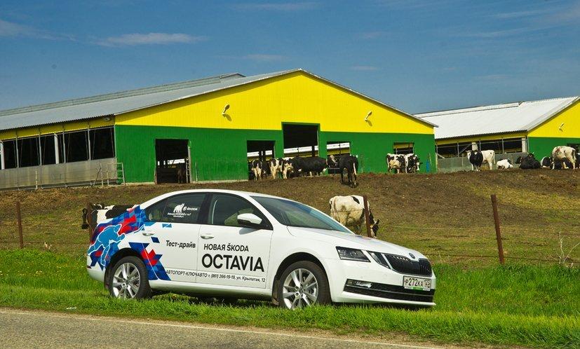 Шкода начала экспортировать российскую Octavia вЕвропу