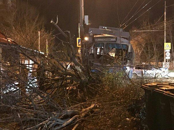 Троллейбус спассажирами снес дерево вКраснодаре