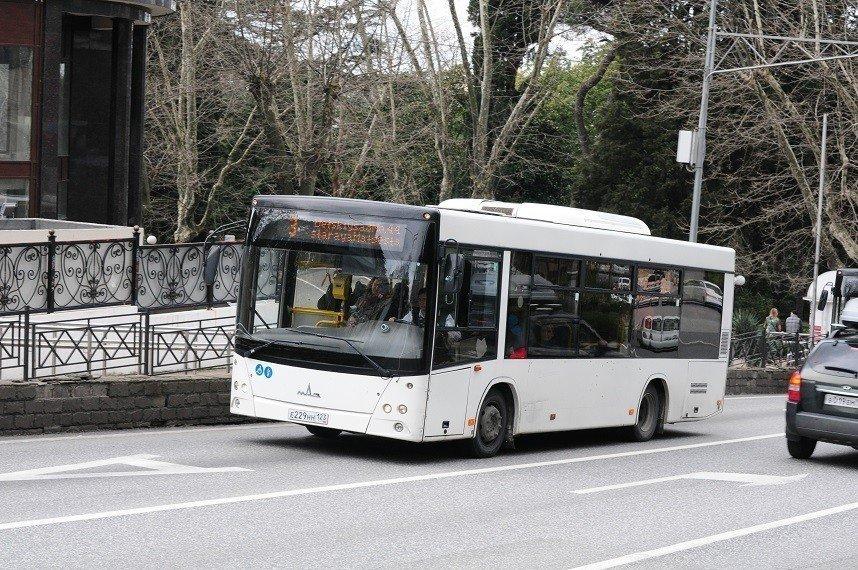 Подорожает проезд вобщественном транспорте вСочи